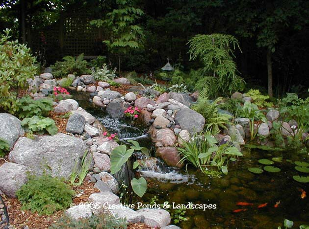 Photo of pond & waterfall installation in the Twin Cities of Minneapolis & St. paul MN.